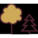 ikona hotel brochow okolica drzewa